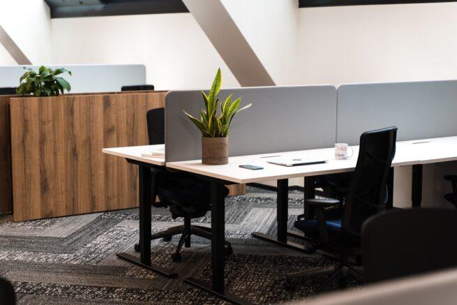 В нашем новом офисе также присутствует растительность для наилучшего дыхания и успокоения