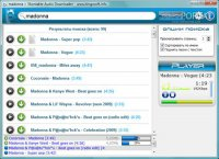 Vkontakte Audio Downloader 1.1